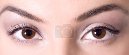 美丽的棕色眼睛_高清图片_邑石网