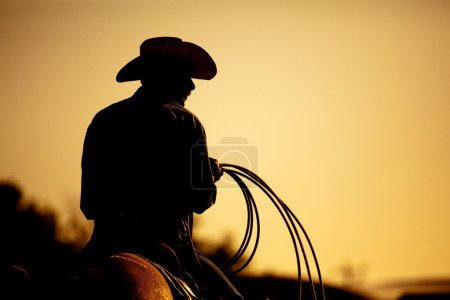 Rodeo cowboy silhouette
